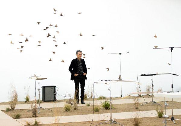 Musique à vol d'oiseaux au musée