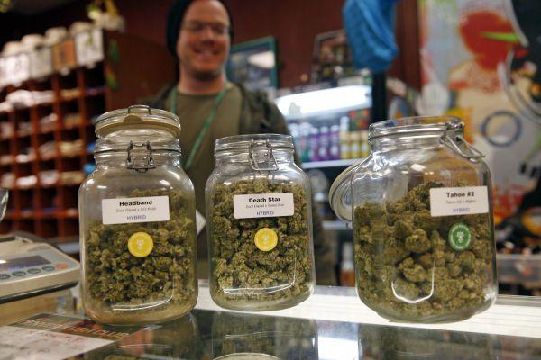 Leitão confus sur la marijuana