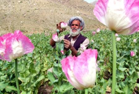 La géopolitique derrière la guerre bidon des États-Unis en Afghanistan dans Politico-financier image