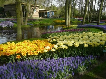 Le jardin néerlandais Keukenhof est entièrement consacré aux bulbes.<br />